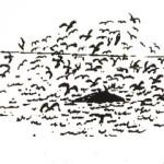 鳥山(トリヤマ)