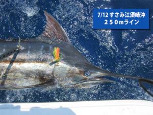 2017年7月12日の釣果 すさみ江須崎沖